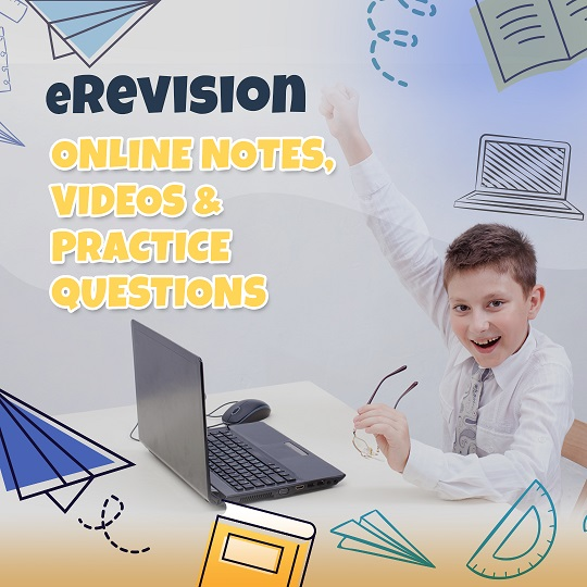 EduReviews eLearning ACE Programme eRevision